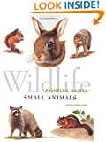 Wildlife Painting Basics - Small Animals