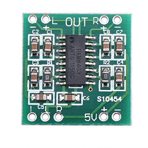 DEOK Mini Digital Verstärker-Brett
