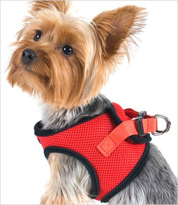 "Doggie Design Ultra Usa Choke-Free Dog Harness - Scarlett Red - Xs (10"" - 13"" Girth)"