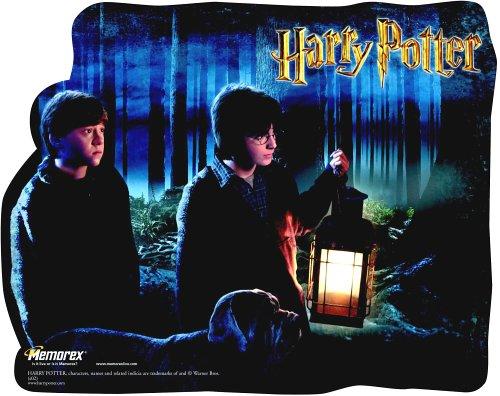 memorex-harry-potter-raton-forrest