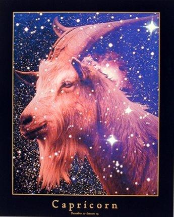 Astrology-Capricorn-Dec-23-Jan-19-Zodiac-Horoscope-Wall-Decor-Art-Print-Poster-16x20