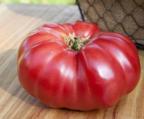 Mortgage Lifter Heirloom Beefsteak Tomato Premium Seed Packet