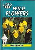 I Spy Wild Flowers (I Spy)