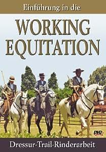 Einführung in die Working Equitation