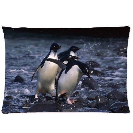 CCTUSGSH Cute Animal Series Cotton Throw Pillow Case Decorative Cushion Cover 16 X 24 Inches One ...