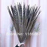 Maslin 10pcs 50-55cm Real Long Pheasant Feathers Plumage for Clothing Home Wedding Decoration centerpieces