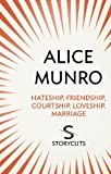 Hateship, Friendship, Courtship, Loveship, Marriage (Storycuts)
