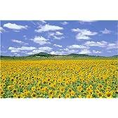 1000ピース ひまわりの花咲く丘-北竜町(50x75cm)