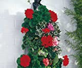 Kleeneze Hanging Basket Flower Bags Pack of 2