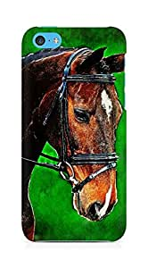 Amez designer printed 3d premium high quality back case cover for Apple iPhone 5C (Painting Horse)