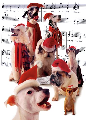 Singing Dogs Boxed Holiday Cards