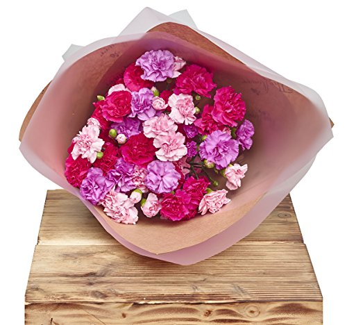 the-flower-rooms-classic-spray-carnations-pinks-floral-wrap-sorry-flowers-love-you-and-anniversary-b