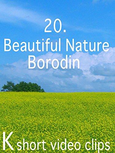 Clip: 20.Beautiful Nature--Borodin