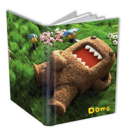 Domo Journal
