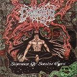 Slumber Of Sullen Eyes / Unholy Domain