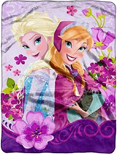 """Disney Frozen """"Celebrate Love"""" Micro Raschel Throw By The Northwest Company, 46 By 60-Inch front-871557"""