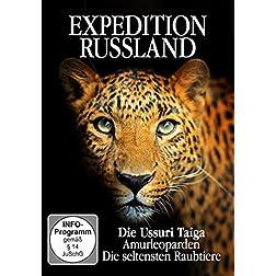 Amurleoparden - Die seltensten Raubtiere - Expedition Russland - Die Ussuri Taiga