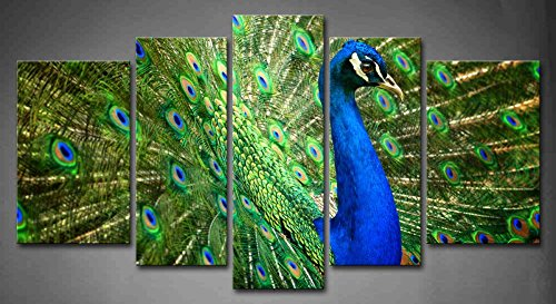 5 Panel Wall Art Blue Proud Male Asian Peacock Shows Off His Fascinating  Plumage Painting Pictures Print On Canvas Animal The Picture For Home  Modern ...