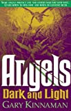 img - for Angels Dark and Light book / textbook / text book