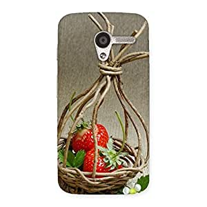 Gorgeous Straberry Basket Multicolor Back Case Cover for Moto X
