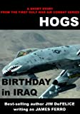 HOGS:Birthday in Iraq (Jim DeFelices Hogs Short Story Collection)