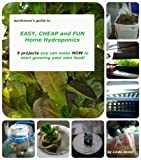 earthmoms Guide to EASY, CHEAP and FUN Home Hydroponics 5 projects you can make NOW  to get started growing your own food!