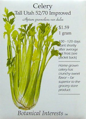 Celery Tall Utah Improved Seeds 250 Seeds
