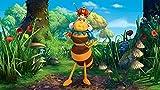 Image de Maya l'abeille - Coffret: Objectif miel!