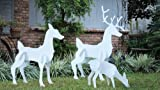 Outdoor Christmas Reindeer Family - Christmas Deer Set