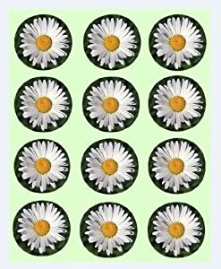 12x Daisy Design rice paper fairy / cup cake 40mm toppers pre cut decoration Flowers