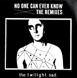 The Twilight Sad No One Can Ever Know - The Remixes