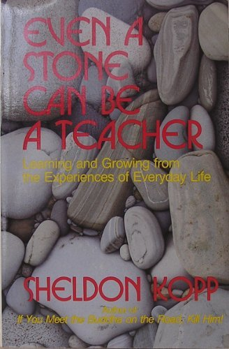 Even a Stone Can Be a Teacher: Learning and Growing from the Experiences of Everyday Life