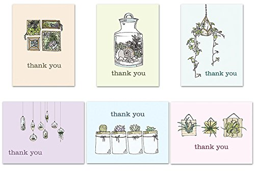 72 Thank You Cards - Sweet Succulents Thank You - Tan Envelopes Included - Blank Cards