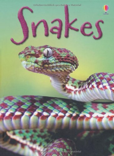 Snakes (Beginners)