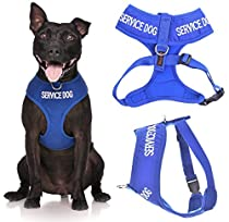 SERVICE DOG (Do Not Disturb/Dog Is Working) Blue Color Coded Non-Pull Front and Back D Ring Padded and Waterproof Vest Dog Harness PREVENTS Accidents By Warning Others Of Your Dog In Advance (L)