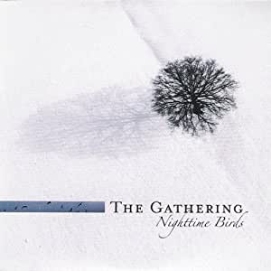 Nighttime Birds Vinyl Lp The Gathering Amazon De Musik