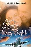 Love Takes Flight: A Billionaire Love Story (Billionaire Endearment Series Book 1)