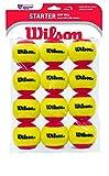 Wilson Starter Easy