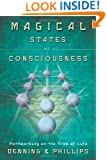 Magical States of Consciousness: Pathworking on the Tree of Life (Llewellyn's Inner Guide)
