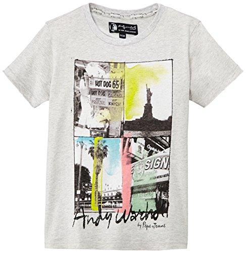 Pepe Jeans Jungen T-Shirt, AUDIENCE, GR. 176 (Herstellergröße: 16 ans), Grau (Grey Marl)