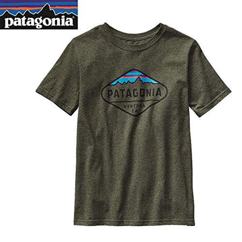 パタゴニアPoly T-Shirt