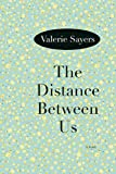 img - for The Distance Between Us: A Novel book / textbook / text book