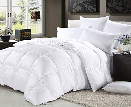 Elliz Luxurious Lightweight White Down Comforter Light Warmth Duvet Insert 100% Cotton 600 Fill Power, Twin, White (Single Duvet Insert compare prices)