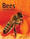 img - for Bees: A Natural History book / textbook / text book