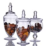 TERRA COLLECTION SET OF THREE ASSORTED MINI GLASS CANNISTERS