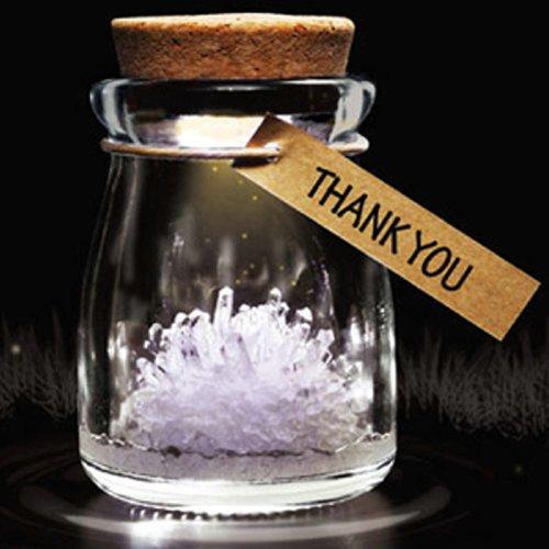 Diy Growing Grow Crystal Bottle Jar Powder Led Mood Light Lamp Wishing Wish White