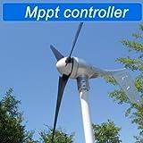 GTSUN MAX 600W 12V/24V/48V wind turbine generator with mppt controller