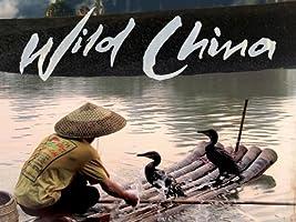 Wild China [HD]
