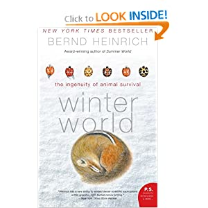 Winter World: The Ingenuity of Animal Survival [With Earbuds] (Playaway Adult Nonfiction) Bernd Heinrich and Mel Foster