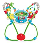 Bright Starts Activity Jumper, Giggle Bugs